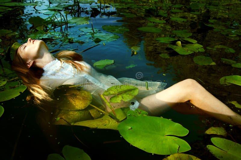 Natação macia da jovem mulher na lagoa entre lírios de água imagem de stock