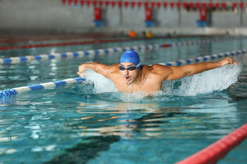 Natación atlética joven del hombre en piscina imágenes de archivo libres de regalías