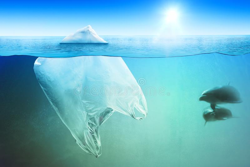 Natación de dos delfínes cerca de la bolsa de plástico en el mar abierto foto de archivo