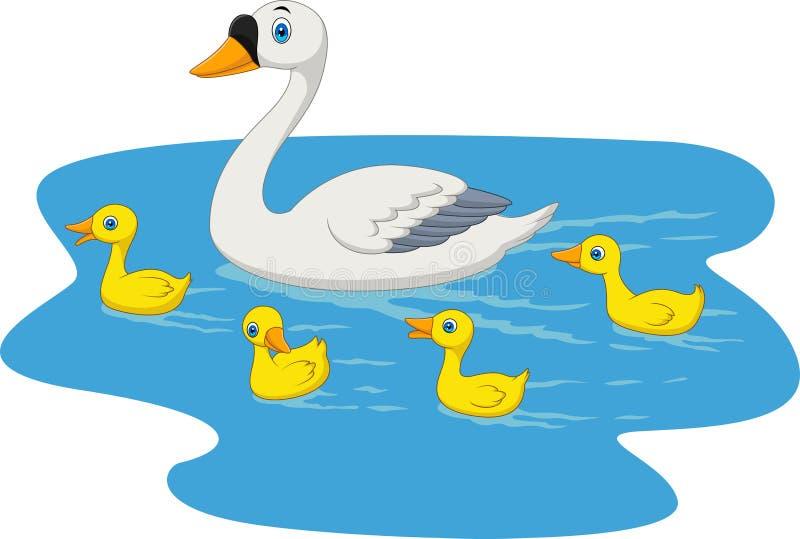Natación de la familia del cisne de la historieta en la charca ilustración del vector