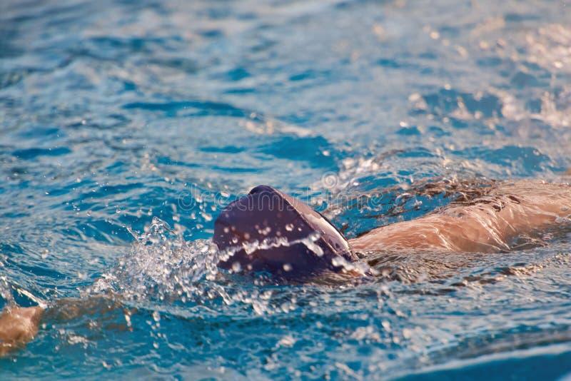 Natación de la mujer en piscina imagenes de archivo