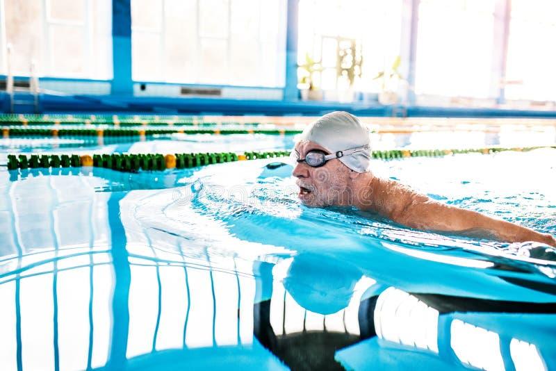 Natación del hombre mayor en una piscina interior foto de archivo