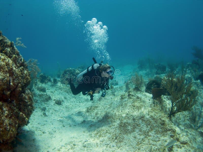 Natación del zambullidor de equipo de submarinismo sobre un filón de la isla del caimán imagen de archivo libre de regalías