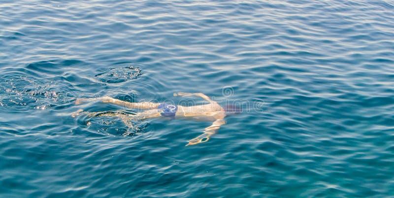 Natación joven del individuo en el mar foto de archivo