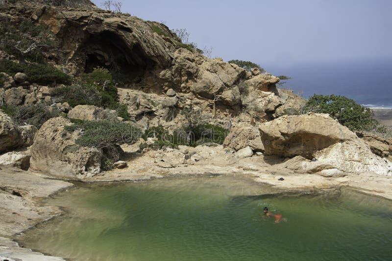 Natación nativa en la piscina en una roca, isla de Socotra, Yemen, febrero, 12mo, 2014 de Socotran fotos de archivo