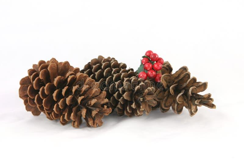 Natal do cone do pinho imagens de stock royalty free