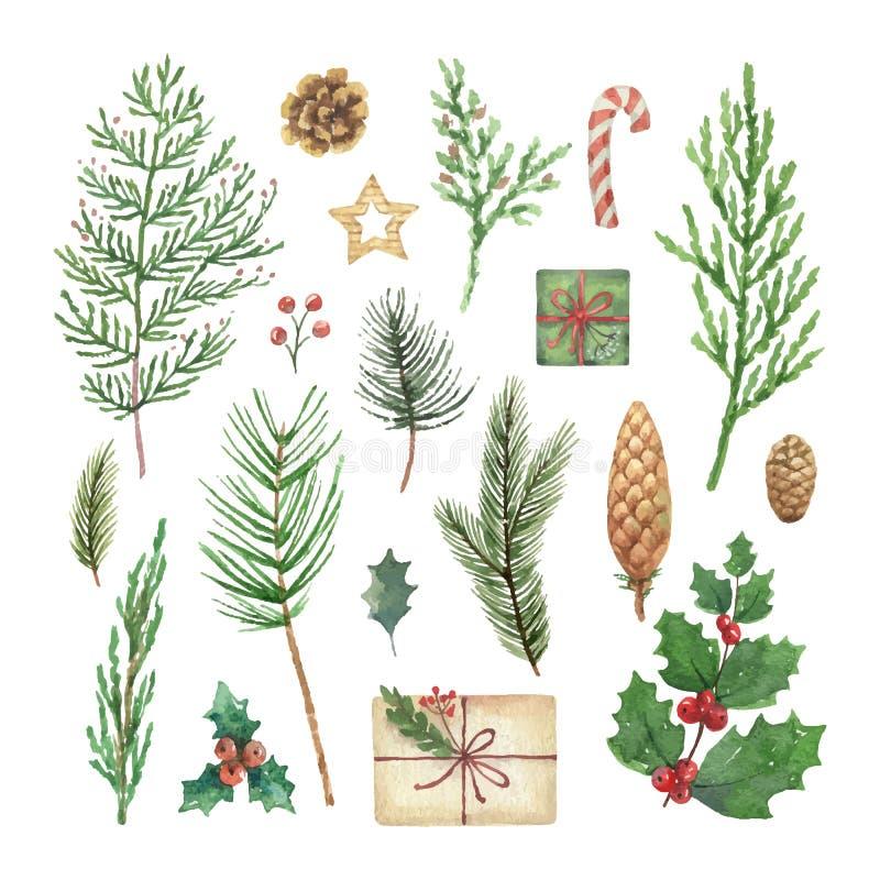 Natal do vetor da aquarela ajustado com ramos, bagas e folhas de árvore conífera sempre-verdes ilustração do vetor