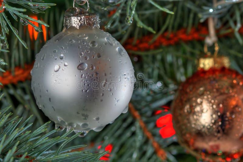 Natal molhado imagens de stock royalty free