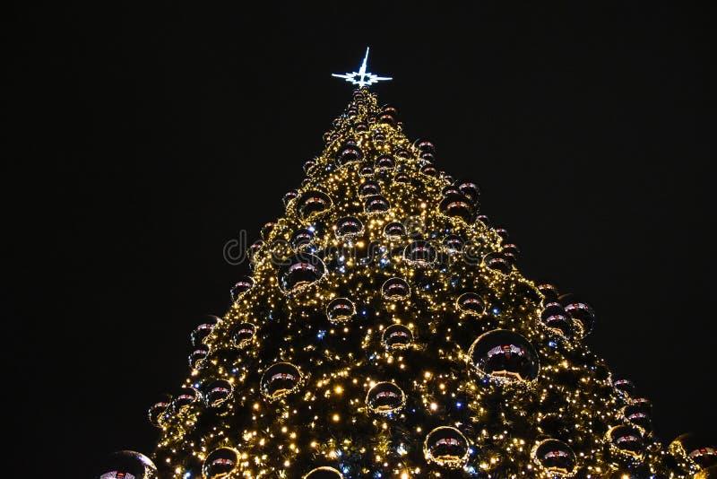 Natal no Polônia, Krakow, centro, árvore de Natal imagens de stock