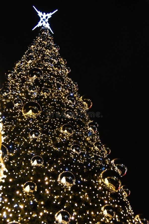 Natal no Polônia, Krakow, centro, árvore de Natal imagem de stock