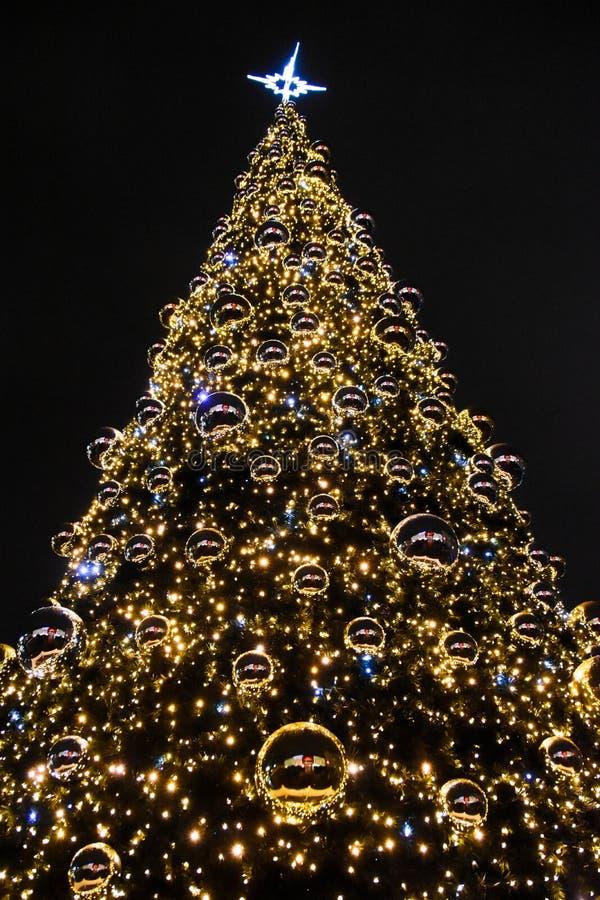 Natal no Polônia, Krakow, centro, árvore de Natal imagem de stock royalty free