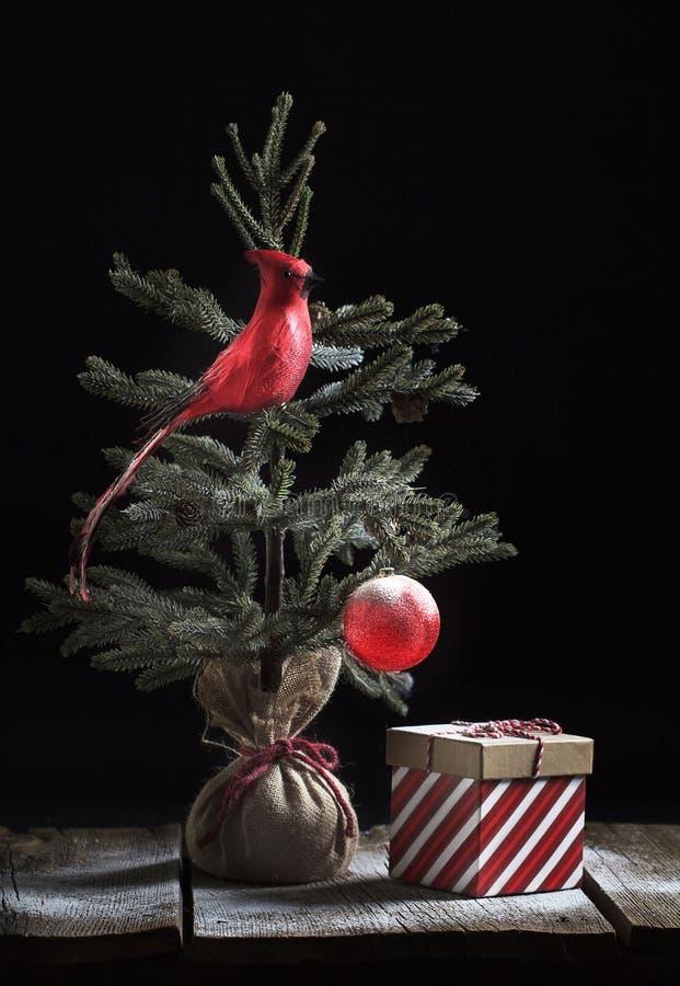Natal Tree cardinal e presente fotos de stock