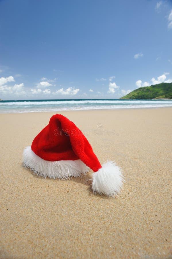 Natal tropical fotos de stock