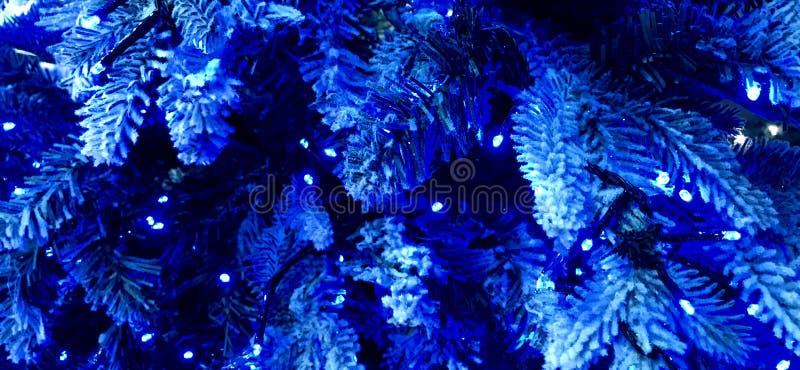 Natale blu, albero di Natale frocked bianco con le luci blu immagine stock