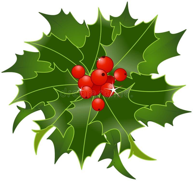 Natale Holly Berry illustrazione vettoriale