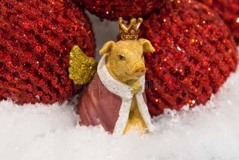 Natale, maiale giallo dorato della decorazione del nuovo anno con le ali nella fine della corona su fotografia stock