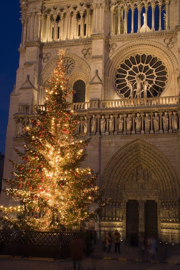Natale a Notre Dame immagini stock libere da diritti