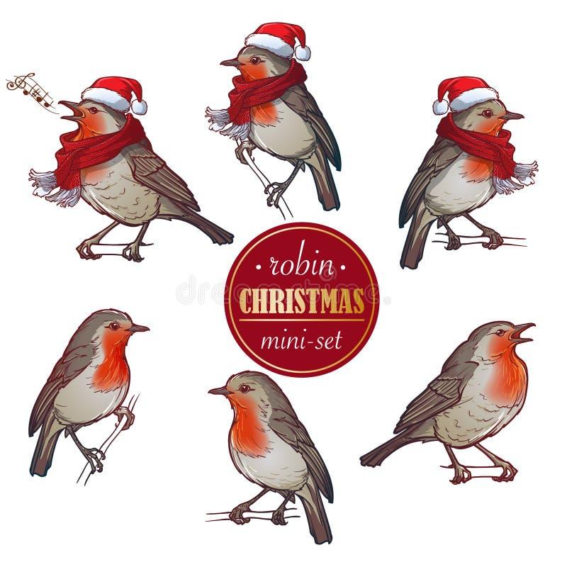 Natale Robin Un insieme di 6 pitture disegnate a mano di Robin negli angoli differenti con o senza il cappello e la sciarpa illustrazione vettoriale