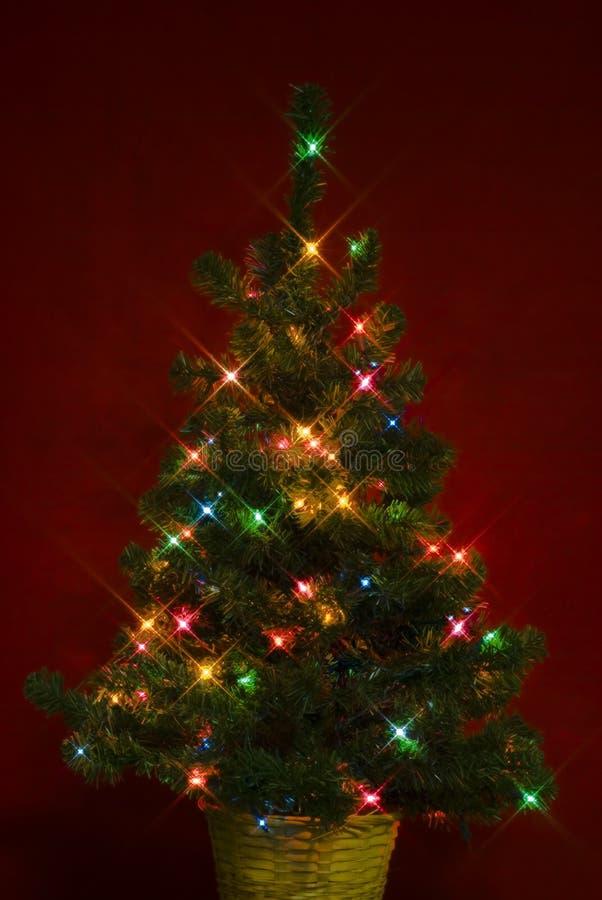 Natale Tree5 fotografia stock
