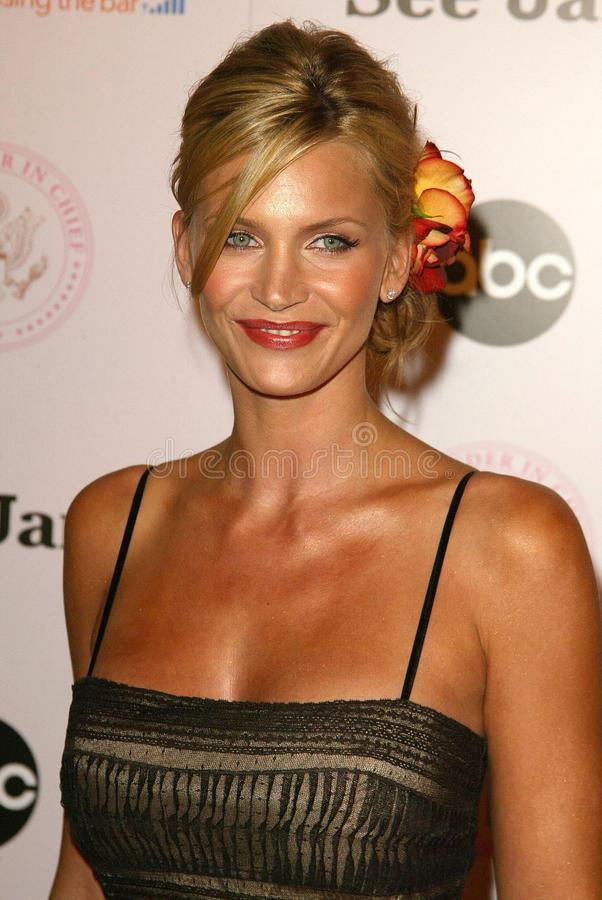 Natasha Henstridge. At the 'Commander in Chief' Inaugural Ball and Premiere Screening. Regent Beverly Wilshire, Beverly Hills, CA 09-21-05 stock image