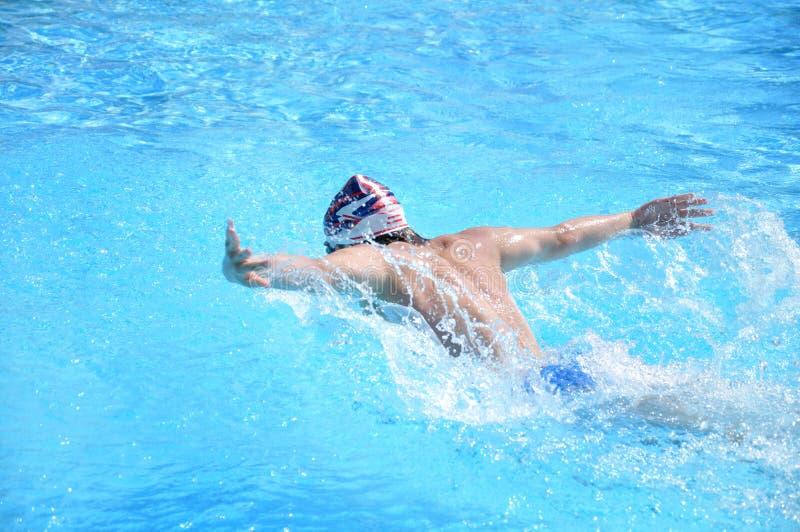 natation стоковое изображение