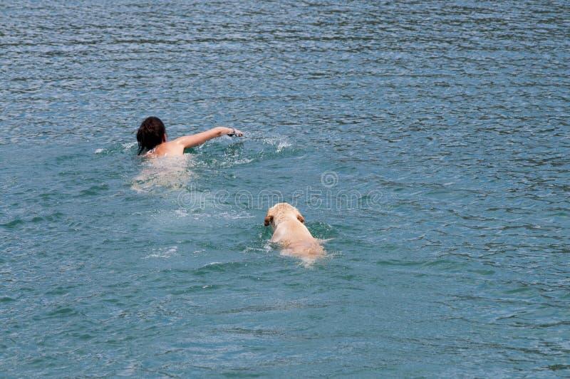 natation photographie stock
