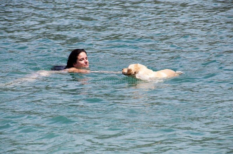 natation photographie stock libre de droits