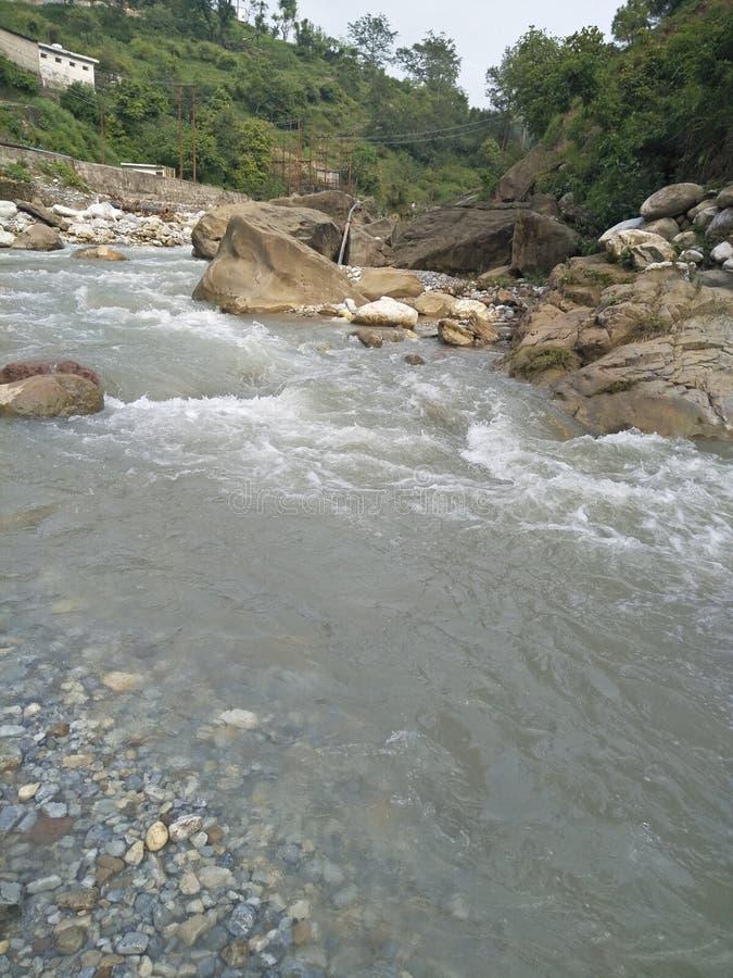 Natation d'eau libre photographie stock libre de droits