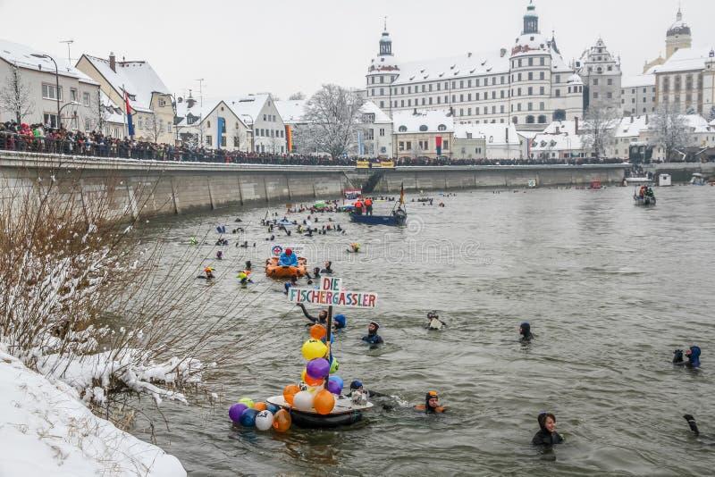 Natation d'hiver image stock