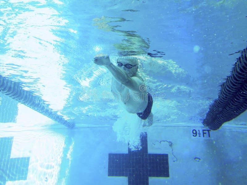 Natation d'homme plus âgé dans la piscine, tir sous-marin photo libre de droits