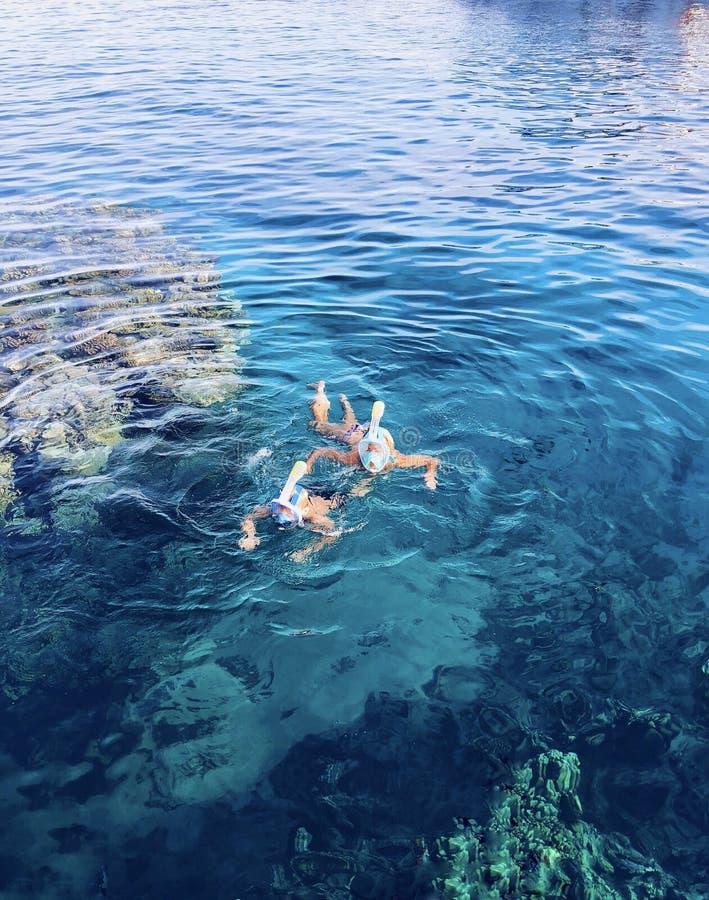 Natation dans l'océan image libre de droits