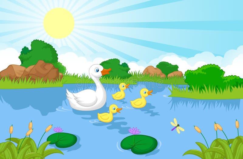 Natation de bande dessinée de famille de canard illustration libre de droits