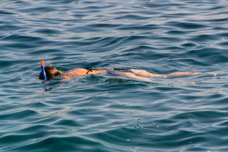 Natation de jeune fille en mer images libres de droits