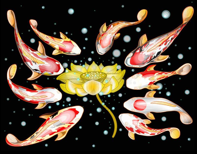 Natation de 9 poissons de Koi autour de fleur d'or de lotus illustration de vecteur