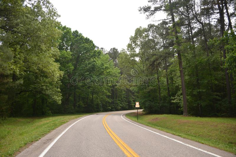 Natchez Trace Parkway Roadway Tennessee. Natchez Trace State Park established 1955, is located in western Tennessee. It was named for the Natchez Trace woodland stock photo
