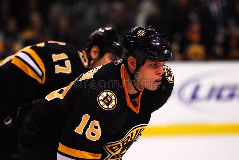 Nathan Horton Boston Bruins. Nathan Horton, newly acquired forward for the Boston Bruins royalty free stock photography