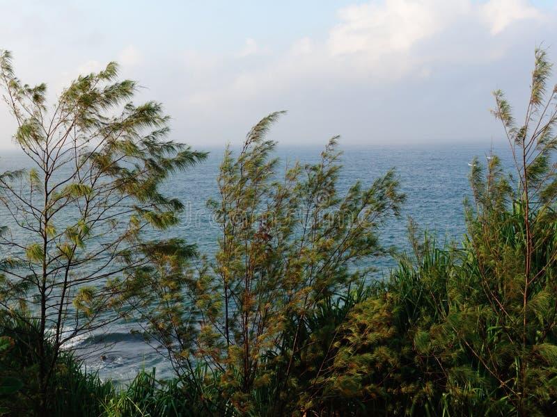 Nation insulaire tropicale aux paysages marins bleutés et fertiles photographie stock libre de droits
