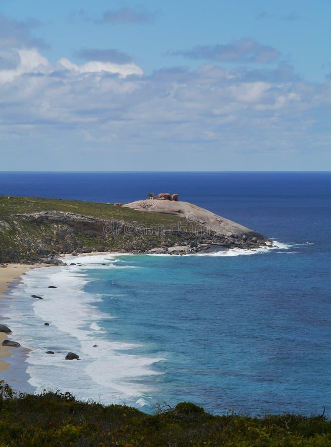 Nationa parka Flinders pościg fotografia royalty free