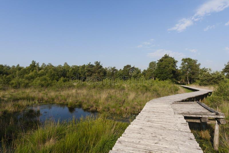 Nationaal Парк De Groote Слезать, корка Groote национального парка стоковые изображения rf