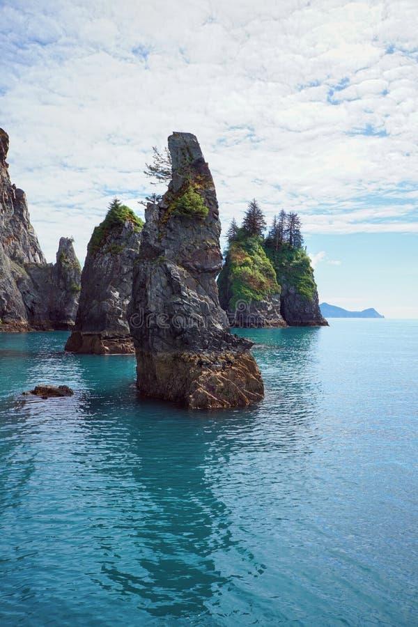 Nationaal bos van Alaskan royalty-vrije stock afbeelding