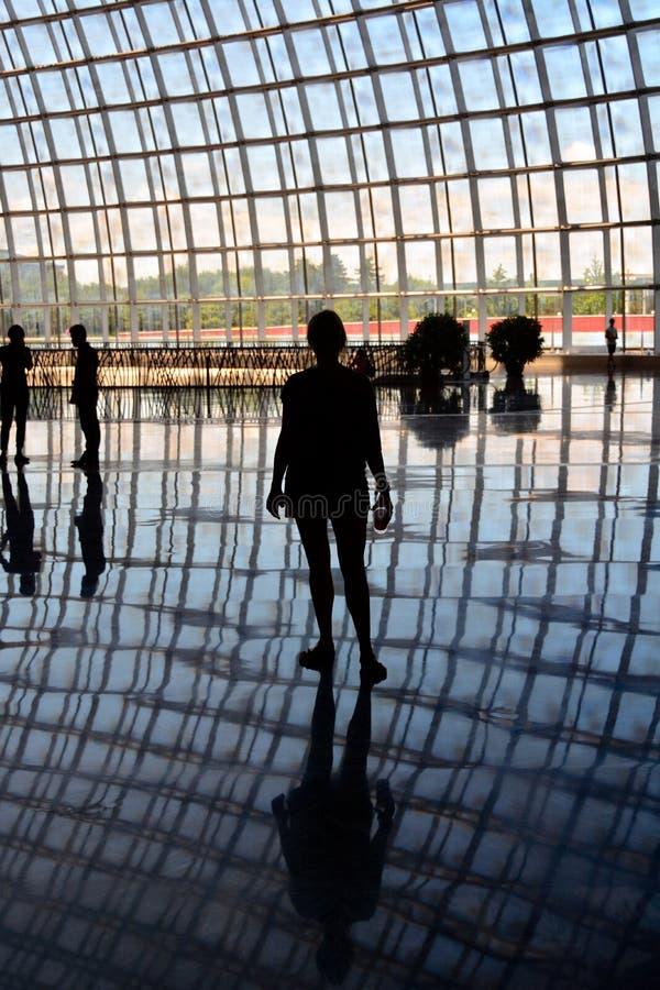 Nationaal de Operahuis van Peking stock fotografie