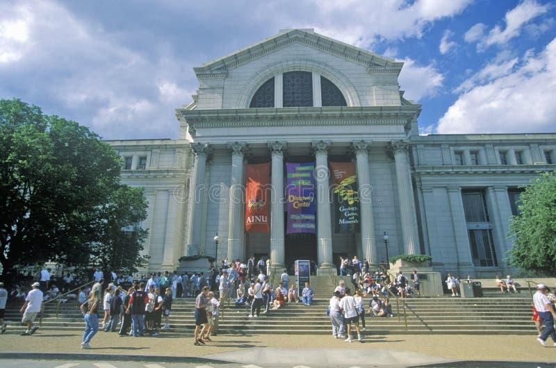 Nationaal Museum van Biologie - Smithsonian Institution, Washington, gelijkstroom royalty-vrije stock foto