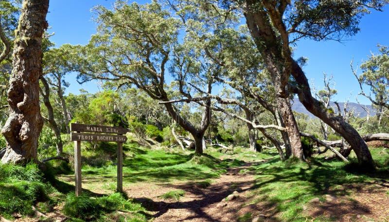 Nationaal park royalty-vrije stock afbeeldingen