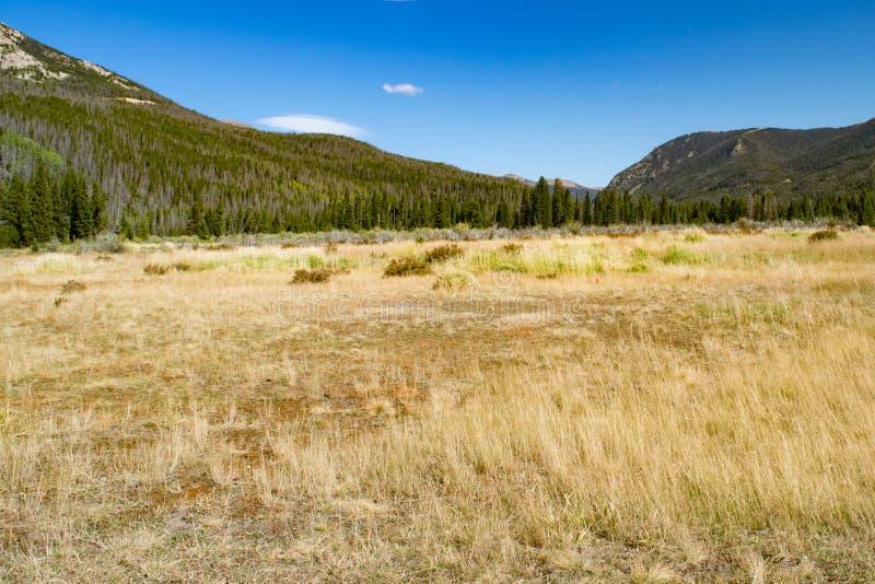 Nationaal park Colorado, USA-Rocky Mountains stock afbeelding