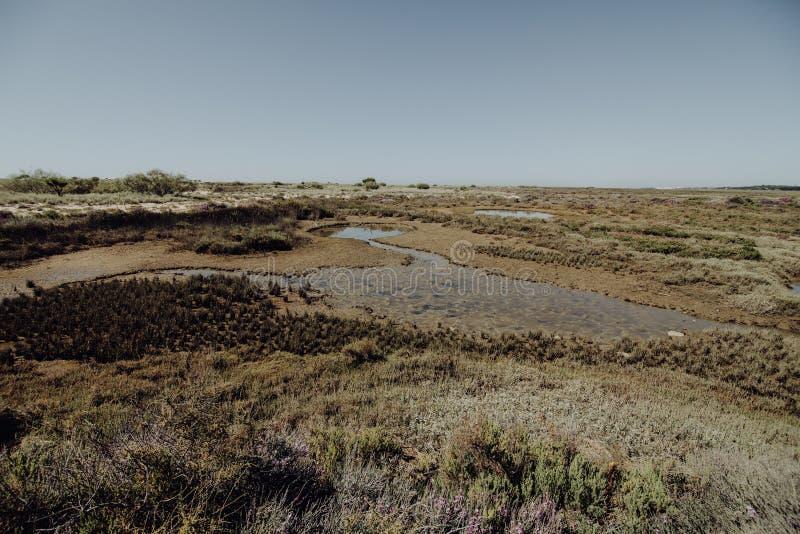 Nationaal park Ria Formosa in Algarve gebied Portugal stock afbeelding
