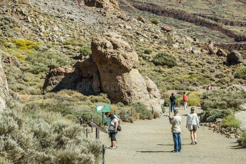 Nationaal Park Teide, Tenerife, Spanje - Juni, 11, 2015 Weergeven van beroemde kleine rots dichtbij vulkaan Teide op Tenerife Moo royalty-vrije stock afbeelding