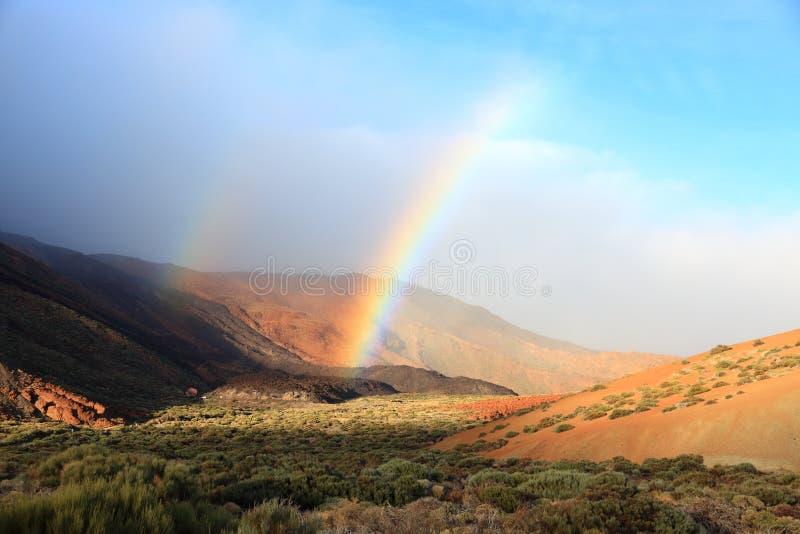 Nationaal Park Tenerife - Teide stock afbeelding