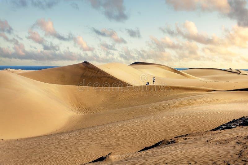 Nationaal park van Maspalomas-zandduinen Gran Canaria, Kanarie isl royalty-vrije stock afbeelding