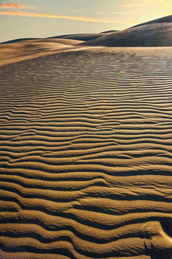 Nationaal park van Maspalomas-zandduinen Gran Canaria, Kanarie isl stock fotografie