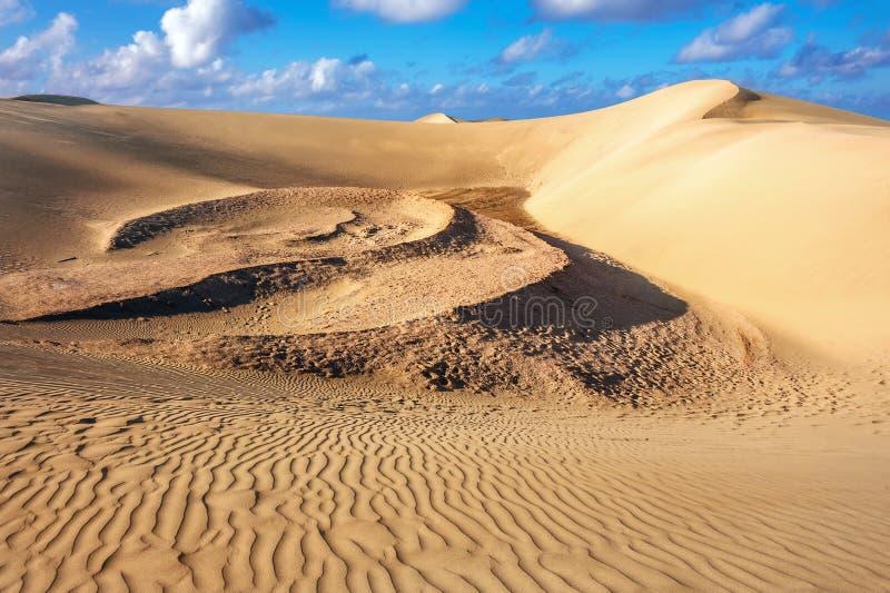 Nationaal park van Maspalomas-zandduinen Gran Canaria, Kanarie isl royalty-vrije stock foto